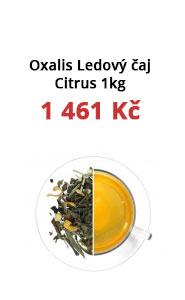 Oxalis Ledový čaj Citrus - zázvor